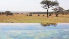 Serengeti-Serengeti-House-4