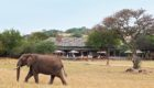 Serengeti-Serengeti-House-6