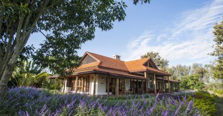 Legendary Lodge - Serengeti Luxury Accommodation