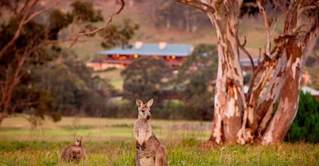 One&Only Wolgan Valley - New South Wales Luxury Accommodation