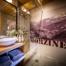 Morzine Chalet The View 9D