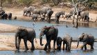 South-Africa-Ulusaba-Game-Reserve-18